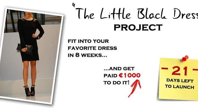 THE LITTLE BLACK DRESS PROJECT UPDATE